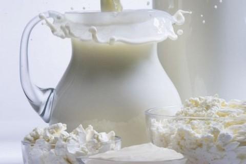 Probiotici alleviano il sovrappeso e l'ansia