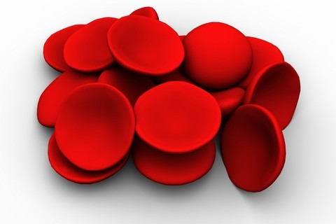 L'emofilia, il difetto della coagulazione del sangue  è nel codice genetico