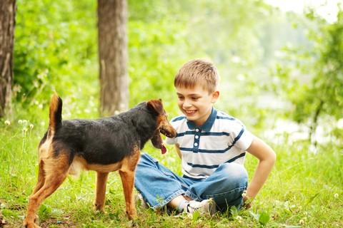 Proprietari di cani, ci sono nuove regole da rispettare per la sicurezza