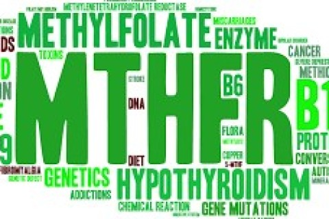 Folati, trombofilia ed enzima MTHFR