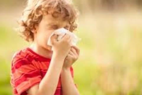 Come difendersi dalle allergie partorite dalla primavera