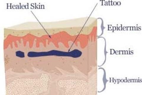 Piercing e tatuaggi, sono necessari più controlli