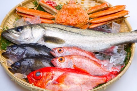 Anisakis: Sushi e sashimi, quali rischi corriamo