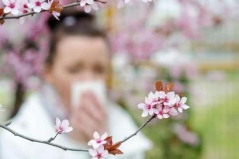 A primavera le allergie sono i primi fiori a sbocciare