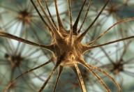 Diagnosi di epilessia in aumento nei bambini ma buone nuove in arrivo