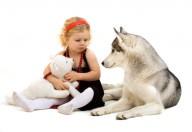 Animali da compagnia, ad ogni famiglia il proprio
