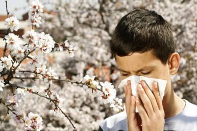 Spesso ai bambini esce il sangue dal naso: fermiamolo così