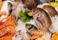 Pesce in gravidanza e sviluppo del sistema nervoso