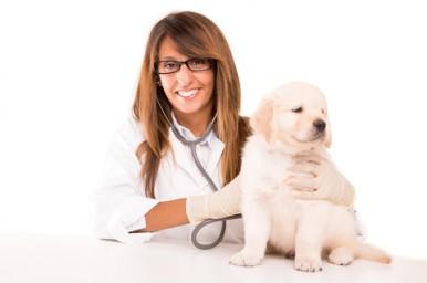 Negli ospedali pediatrici arriva la Pet Therapy