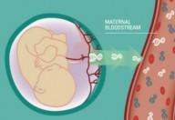 I Non Invasive Prenatal Test