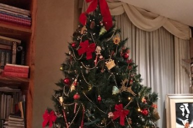Natale è entrato nelle nostre case, uno sguardo sul mondo