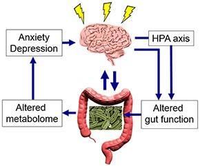 alimentazione e disturbi mentali