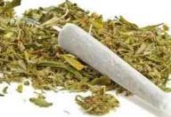 Cannabis sintetica, cosa rischia l'adolescente