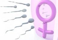 Mattina e primavera: ingredienti per avviare la gravidanza