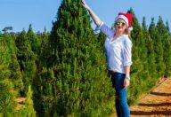 Natale è vicino