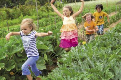 Vivere nel verde è predittivo di buona salute psichica