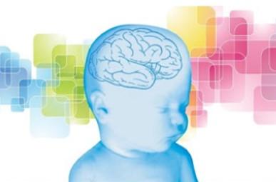 peso alla nascita e intelligenza